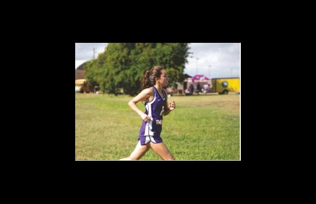 Cross Country at C.C. Miller Invitational