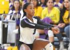 AP v. Banquete Varsity Volleyball